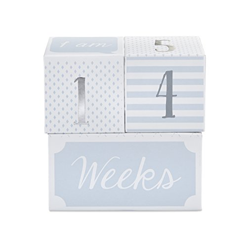 Baby Aspen My First Milestone Prince Age Blocks | Baby Picture Props For Photo Sharing The First Year by Baby Aspen