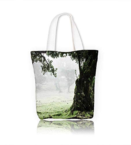 - Canvas Beach Bags Fairy Forest Laurel Forest in Madeira Totes for Women Zippered Beach Shoulder Bag W23xH14xD7 INCH