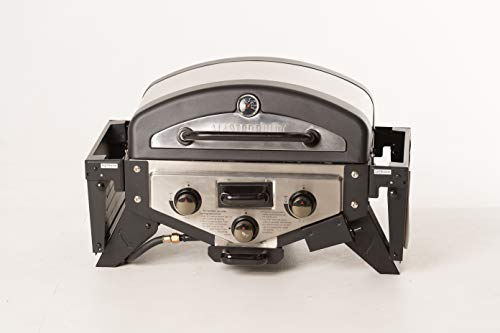 Tabletop Stainless Steel Gas Grill by Masterbuilt