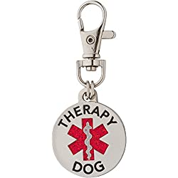 Double Sided Therapy Dog Tag with Glitter Filled Medical Symbol