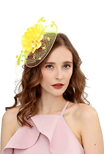 Fascinators Hats for Womens 50s Headwear with Veil Flower Cocktail Wedding Tea Party Church Derby -