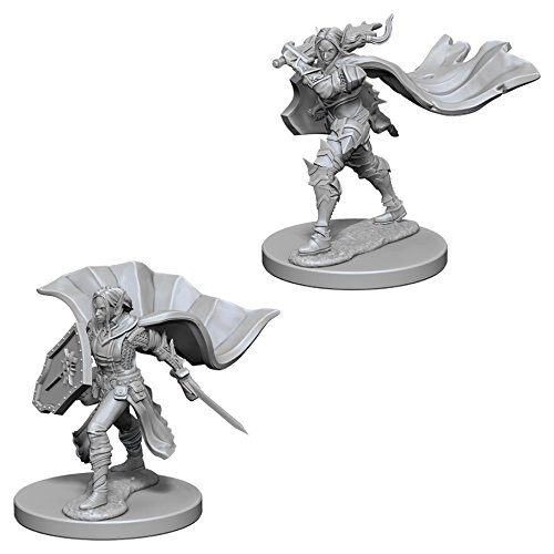 Pathfinder Battles Deep Cuts Miniatures Bundle Elf Male Paladin /& Elf Female Paladin