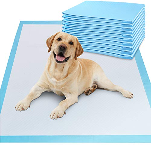 Gimars XL 28x34 Thicker Heavy Absorbency Pet Training Puppy Pee Pads - Extra Large Disposable Polymer Quick Dry No Leaking Pee Pads for Dogs, Cats, Rabbits and Other House Training Pets, 30 count