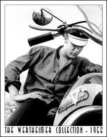 Elvis Movie Poster (Elvis Presley Motorcycle Harley Davidson Wertheimer Collection Retro Vintage Tin Sign)