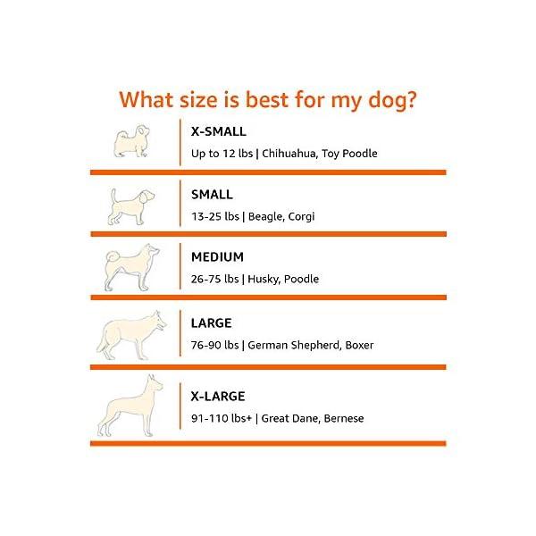 41uUcb%2BeLSL Amazon Basics – Erhöhtes Haustierbett mit kühlender Wirkung, Gr. M, 110 x 65 x 19 cm, Grün