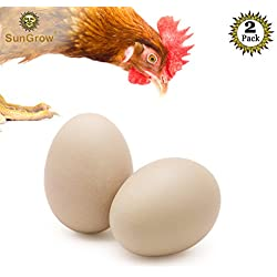 "SunGrow 2 Ceramic Chicken Eggs - Natural Looking 2.75"" (7cm) Nest Eggs from Encourages Egg Laying and Discourages Pecking & Eating - Great for Broodiness Test and Unique Home Decorations"