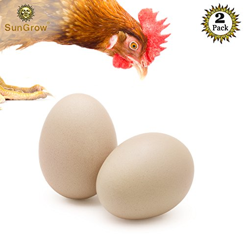 "SunGrow 2 Ceramic Chicken Eggs - Natural Looking 2.75"" (7cm) Nest Eggs from Encourages Egg Laying and Discourages Pecking & Eating - Great for Broodiness Test and Unique Home Decorations by SunGrow"