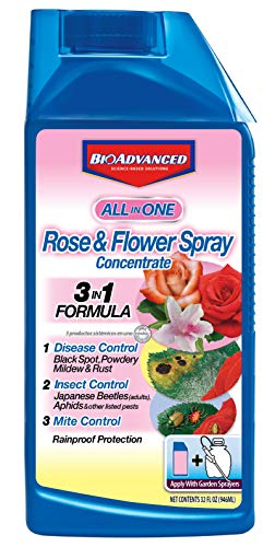 BioAdvanced 708260D All-in-One Rose & Flower Spray Systemic Insecticide, Fungicide, Miticide, Concentrate, 32-Ounce (Best Feed For Roses)