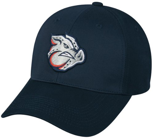 MiLB Minor League ADULT Lehigh Valley IRONPIGS Hat Cap Adjustable Velcro TWILL