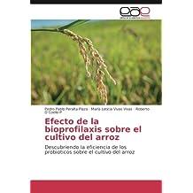 Efecto de la bioprofilaxis sobre el cultivo del arroz: Descubriendo la eficiencia de los probioticos sobre el cultivo del arroz (Spanish Edition)