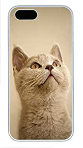 iPhone 5 5S Case Small cat PC Custom iPhone 5 5S Case Cover White