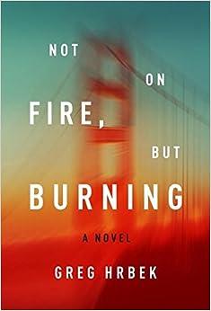 Book Not on Fire, but Burning: A Novel
