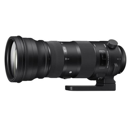 Sigma 150-600mm f5-6.3 DG OS HSM Sports for Canon EOS - 2