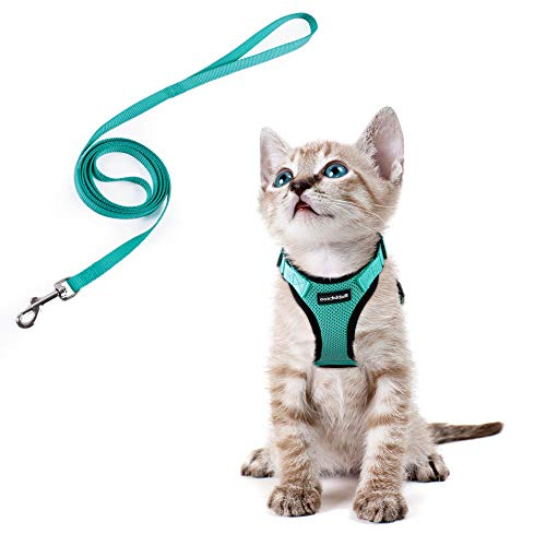 Cat Harness and Leash Set for Walking, Escape Proof with 59 Inches Leash - Adjustable Soft Vest Harnesses for Small Medium Cats, Cat Leash Harness with Reflective Strips & 1 Metal Leash Ring, Green
