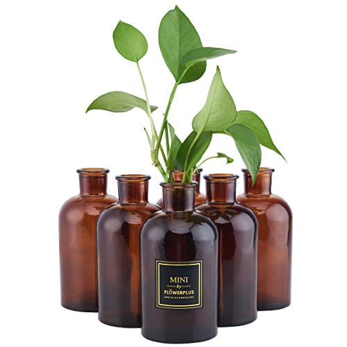 HUAJING Bud Vase, Amber Vintage Glass Vase, 6 Vases Glass Set, Medicine Bottle Vase for Flowers