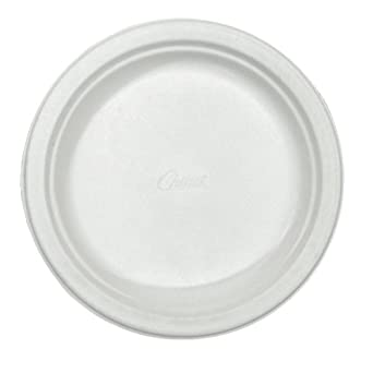 Chinet 21226CT Classic Paper Plates 6 3/4 Inches White Round (  sc 1 st  Amazon.com & Amazon.com: Chinet 21226CT Classic Paper Plates 6 3/4 Inches White ...