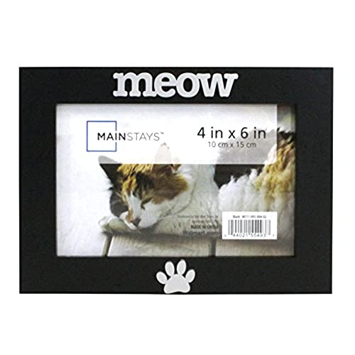 Cat Frames: Amazon.com