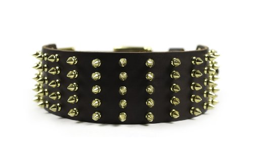 """Dean & Tyler """"Wide Spike Brown Extra Wide Dog Collar with Brass Spikes and Buckle, Size 34-Inch by 2-3/4-Inch, Fits Neck 32-Inch to 36-Inch"""