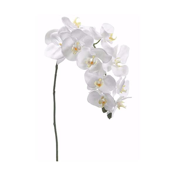 Silk Flower Phalaenopsis Orchid Spray in White37″ Tall x 3-4″ Blooms