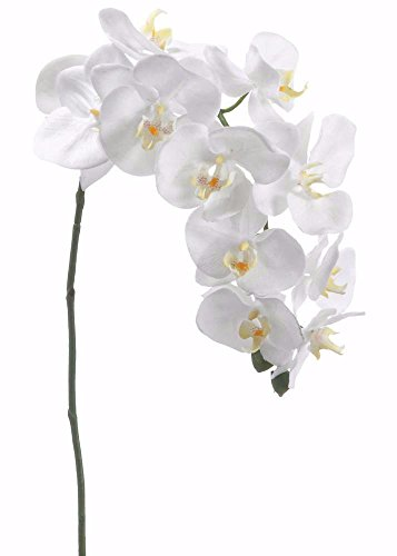 Phalaenopsis Spray (Silk Flower Phalaenopsis Orchid Spray in White37