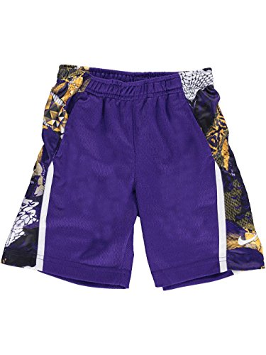 NIKE Little Boys' Shorts (Sizes 4-7) - Purple, 5 (Nike Embroidered Shorts)