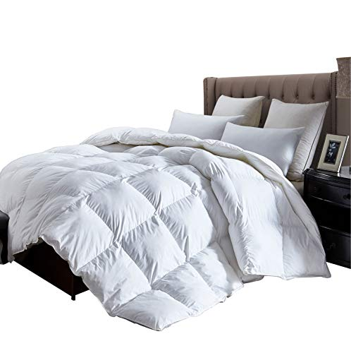 Luxurious Queen Size Lightweight GOOSE DOWN Comforter Duvet Insert All Season, 1200 Thread Count 100% Egyptian Cotton, 750+ Fill Power, 38 oz Fill Weight, Hypoallergenic, White ()