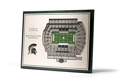 NCAA Michigan State Spartans 5-Layer Stadiumviews 3D Wall - Wall State Michigan Spartans