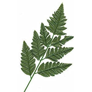 Silk Leather Leaf Fern Leaf-12 stems 111