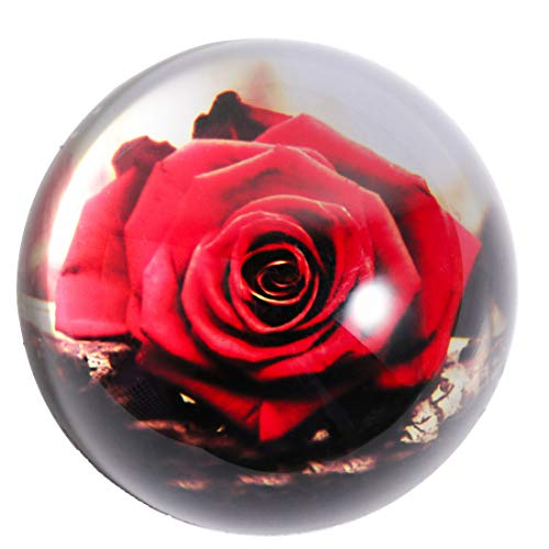HANUR Crystal Paperweight Glass Globe Hemisphere Press Case Creative Decoration Office Supplies (Red rose)