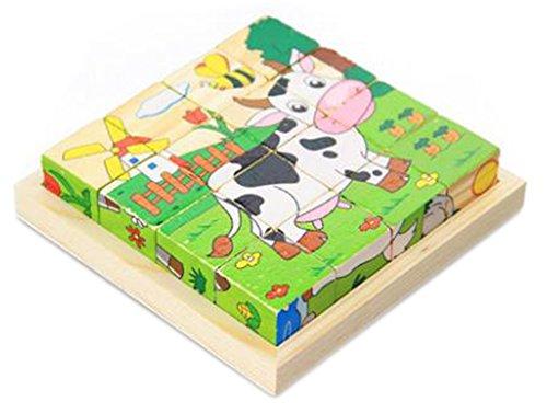 木製キューブパズル 面白い子供木製キューブパズル 木製トレイ付き 1セットの6個のパズル (16 個)#20
