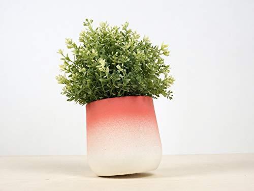 Flowertop Medio - jardin interior de-coracion casa durable naturales originales jarrones hogar plantas de-corativos florero flores macetas: Amazon.es: Handmade