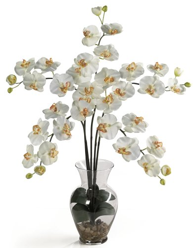 Nearly Natural 1106-CR Phalaenopsis Liquid Illusion Silk Flower Arrangement, Cream (Orchid Cream Silk Pot Plant)