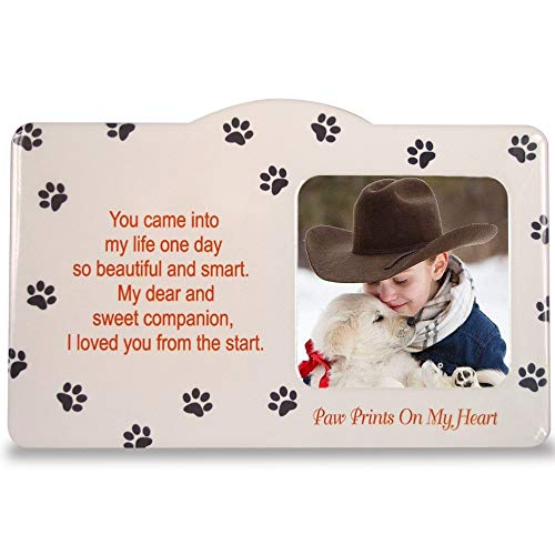 BANBERRY DESIGNS Memorial Pet Picture Frame - Pawprints Themed Photo Plaque with Dog or Cat Quote - 4