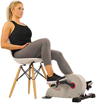 Sunny Health Fitness Magnetic Mini Exercise Bike