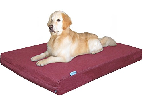 Dogbed4less XXL Large Orthopedic Gel Memory Foam Dog Bed with Durable Denim Cover, Waterproof Liner and Extra Bed Cover 55X37X4 Inch, Bombay Brown by dogbed4less