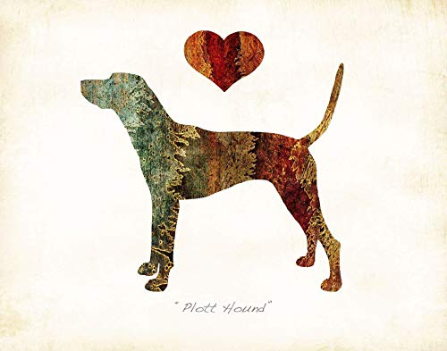 (Plott Hound Dog Breed Watercolor Art Print by Dan Morris)