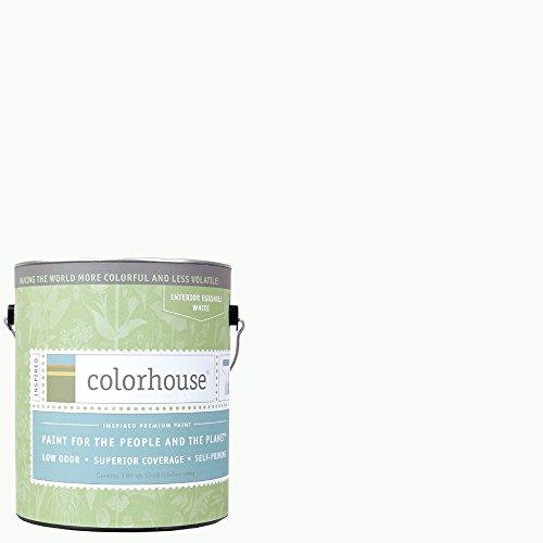Inspired Eggshell Interior Paint, Imagine .01,