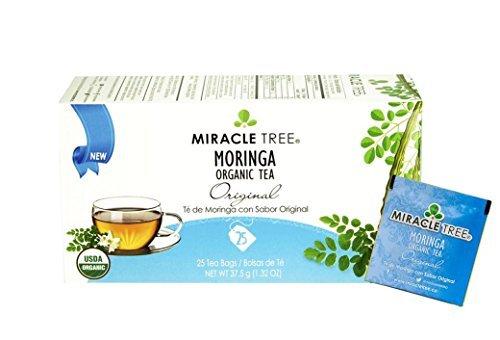 Amazon.com: Moringa Oleifera 4:1 Extract Focus Brain Mood