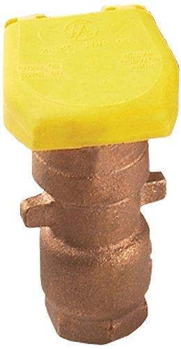 Amazon.com : Hunter Sprinkler HQ3RC 1-Piece Quick Coupler 3/4-Inch ...
