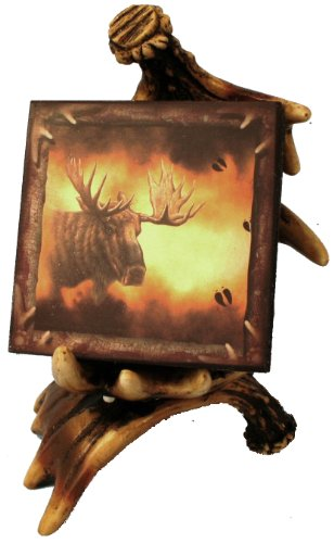 Wildlife Creations Moose Coaster Set