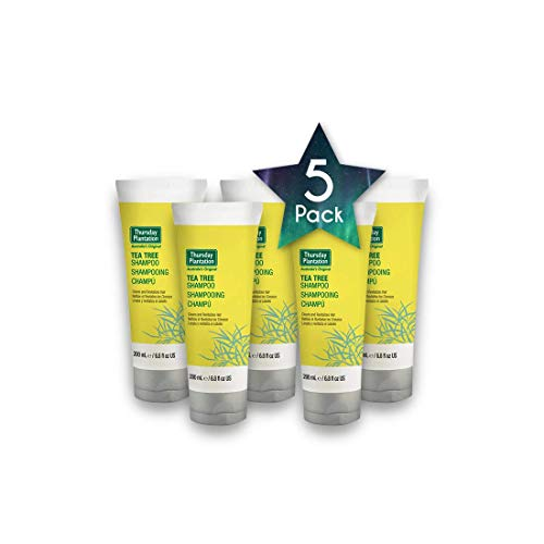(5 PACK Thursday Plantation - Tea Tree Shampoo 200ml - Beauty & Personal Care - Hair Care - Shampoo & Conditioner - Organic Ingredients - Promotes Shiny And Healthy Looking Hair - Hong Kong)