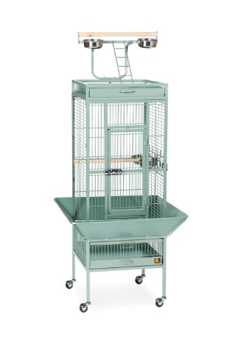 (Prevue Pet Products Wrought Iron Select Bird Cage 3151SAGE Sage Green, 18-Inch by 18-Inch by 57-Inch)
