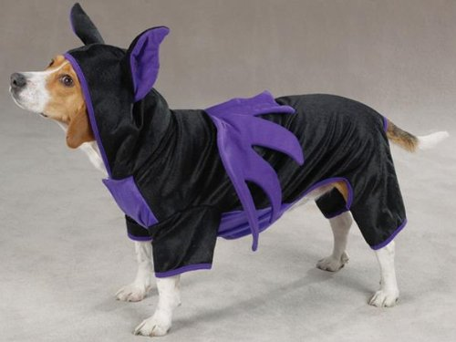 Casual Canine Purple & Black Hooded Flying Bat Dog Halloween Dog Costume w/ Wings Large