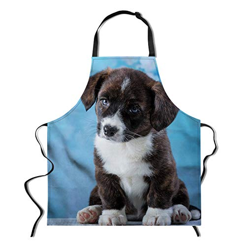 Barbecue Apron,Machine Washable, Adorable Design,Unisex Kitchen Bib Apron with Adjustable Neck,Comfortable and Easy Care Aprons,Professional Stylist Apron,Puppy ()