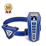 best Training Dog Collar