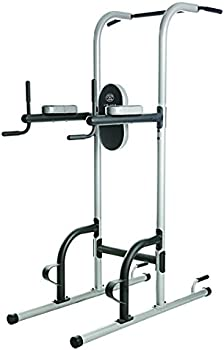 Gold's Gym Vertical Knee Raise Tower