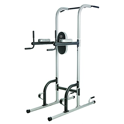 Gold's Gym XR 10.9 Power Tower (Iron Gym Pull Up Bar Ab Straps)