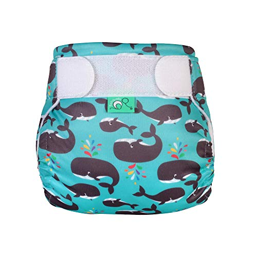 TOTSBOTS Reusable Baby Swim Nappy – Beautiful Swim Nappies Size Newborn to Toddler, Fun in The Sun or Paddle at The Pool Swimming Pool Safe (Finn)