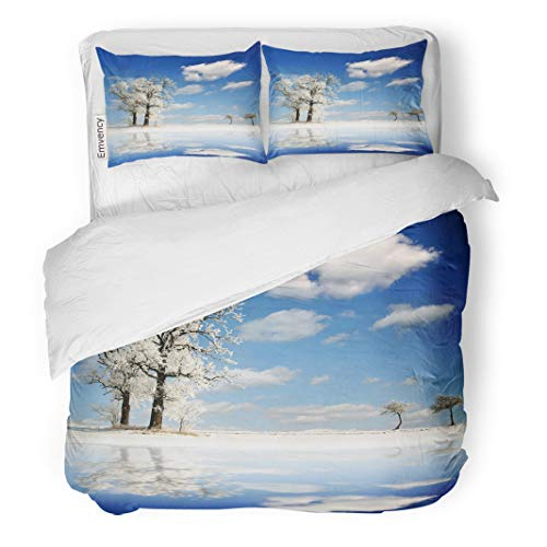 Semtomn Decor Duvet Cover Set Full/Queen Size Scenery Frozen Tree Forest Landscape Reflection Wild Winter Branches Bright 3 Piece Brushed Microfiber Fabric Print Bedding Set Cover -