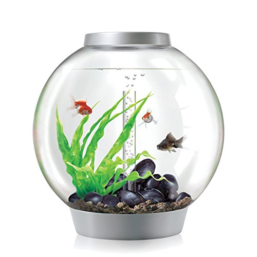 biOrb CLASSIC 60 Aquarium with LED Light – 16 Gallon, Silver by biOrb